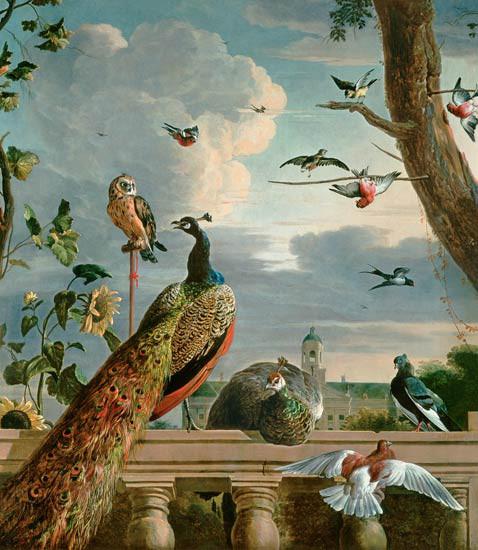 Gierzwaluw op schilderij van Hondecoeter