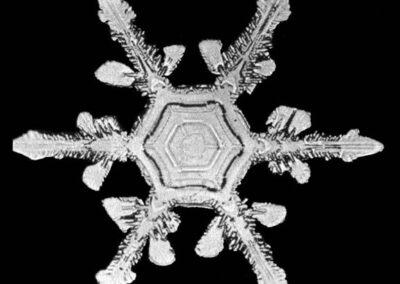 sneeuwvlokken - sneeuwkristallen - William Bentley foto